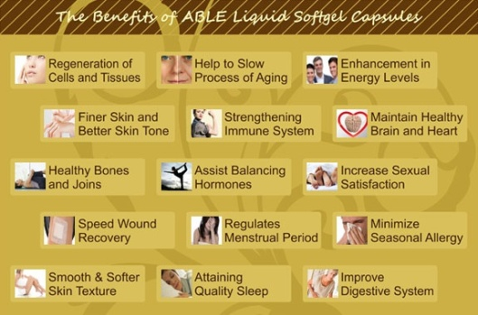 ABLE Softgel capsulas